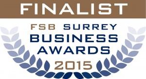 sfb award clean