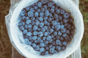 superfoods for stress relief